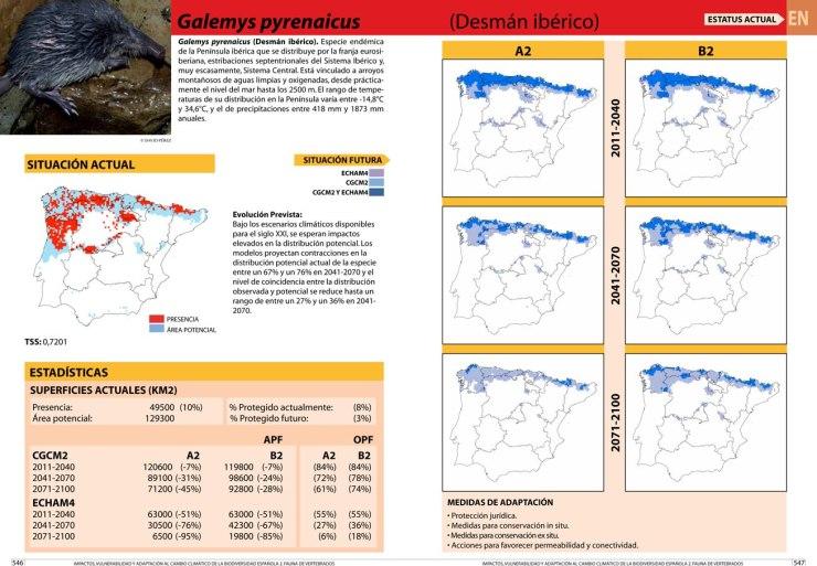 Galemys pyrenaicus desman des pyrenees cambio climatico global warming climate change 500