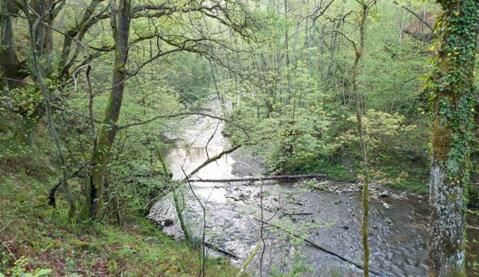 Río mudo 2