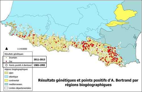 Distribución Galemys Francia 2011_13_500