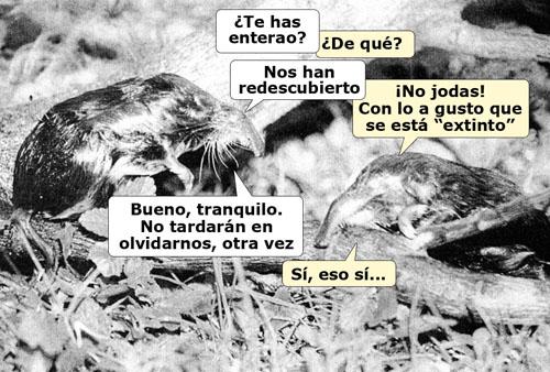Los olvidados_500